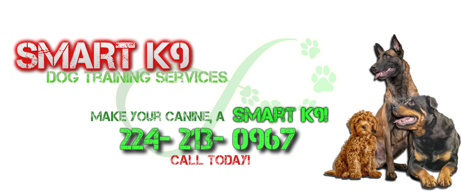 Smart K9 Dog Training Services